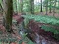Landschaftsschutzgebiet Waldgebiete bei Dielingdorf und Handarpe LSG OS 00025 Datei 19.jpg