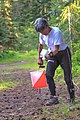 "Last ""O"" event of the week, in the Cle Elum area - Frances checks her map on the run - (28697734326).jpg"