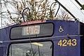 Last Day of the Breda Trolleybuses (30577732906).jpg