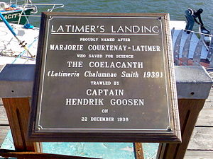 Marjorie Courtenay-Latimer - Brass plate at Latimer's Landing East London.
