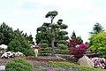 Lausitzer Findlingspark - panoramio (12).jpg