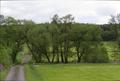 Lauterbach Allmenrod Frischborn SCI 555520683 Brennerwasser Bridge Road.png