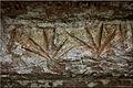 Leafs, rock art in Amambay, Paraguay.jpg
