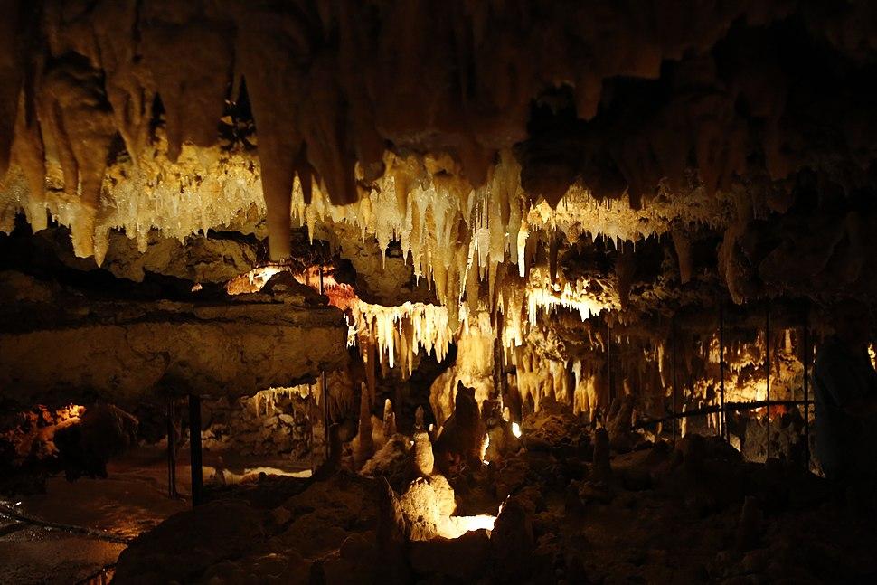 Les Eyzies-de-Tayac-Sireuil - Grotte du Grand Roc 13