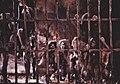 Les sorcières dans le film Macbeth de Claude d'Anna.jpg