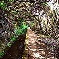 Levada path, Madeira (28778531446).jpg
