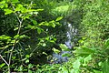 Lieusaint - 2019-05-07 - IMG 0980.jpg