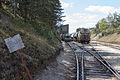 Ligne de Bourron-Marlotte à Malesherbes - 2013-04-21 - IMG 9438.jpg