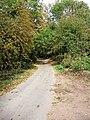 Little Checkhill Lane - geograph.org.uk - 1624305.jpg
