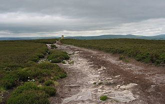 Northumberland - Long Crag summit