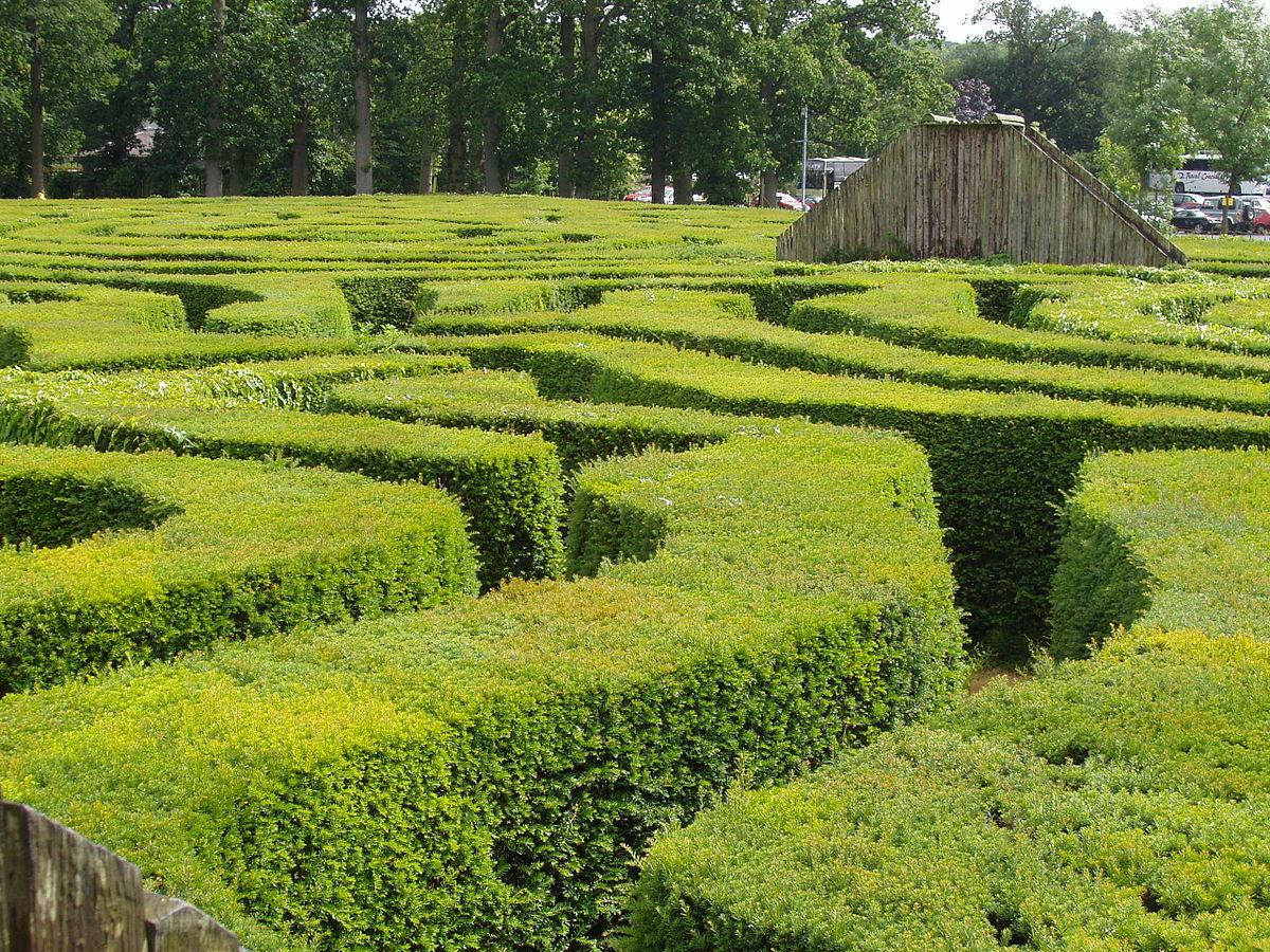 Hedge Wiktionary