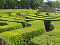 Longleat Hedge Maze (detail).JPG