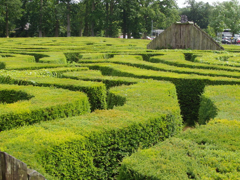 File:Longleat Hedge Maze (detail).JPG