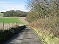 Looking W along Bow Hill - geograph.org.uk - 340375.jpg