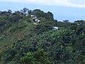 Los guaduales Balboa Cauca - panoramio (14).jpg