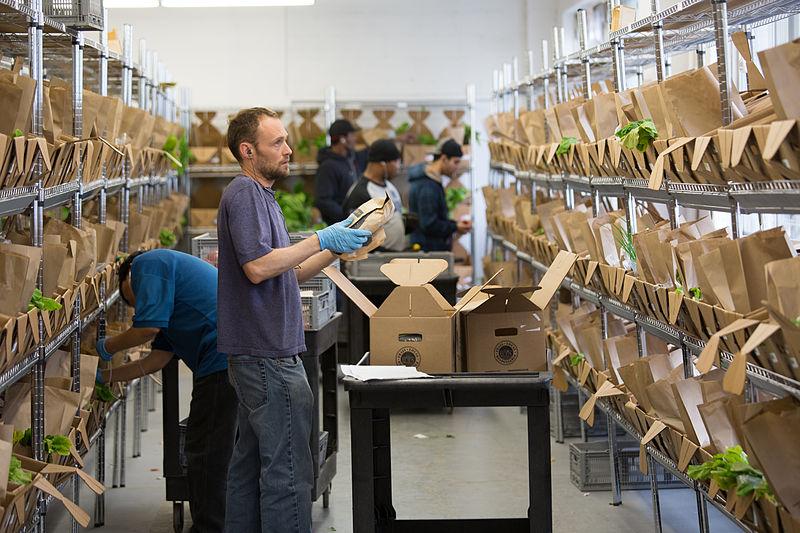 Personen beim Kommissionieren von Ware in einem Lager
