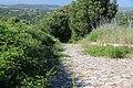Luogosanto - Strada medievale (02).JPG