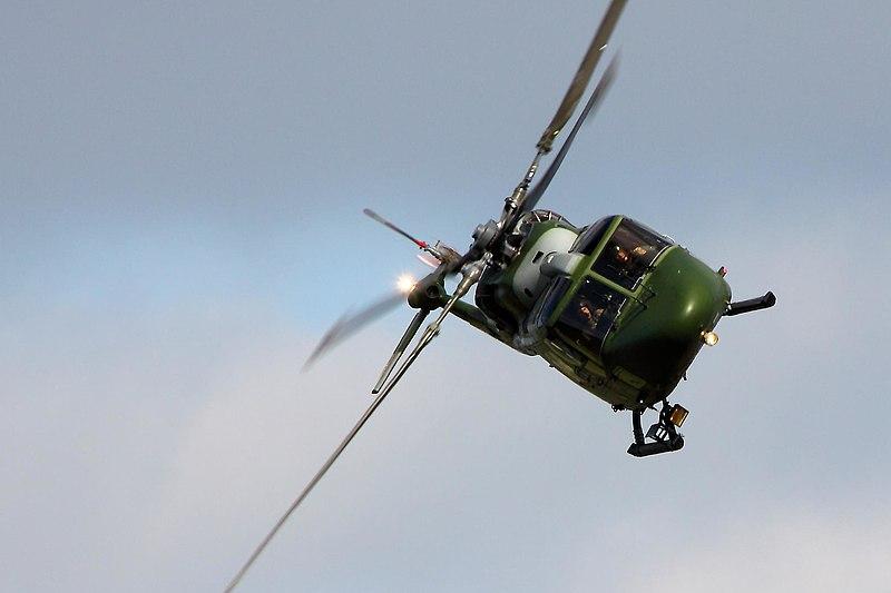 File:Lynx - Abingdon 2013 (8754508426).jpg