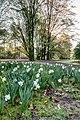 Münster, Park Sentmaring -- 2016 -- 1878-84.jpg