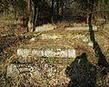 MOs810 WG 2017 2 (Notec Polder) (Herburtowo, old evang. cemetery) (10).jpg