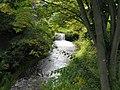 Mabori river.jpg