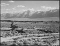 Manzanar Relocation Center, Manzanar, California. A view of surrounding country flanked by beautifu . . . - NARA - 538135.tif