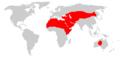 Mapa występowania więlbłądów.png
