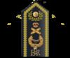 Marshal of the RAF shoulder Board.png