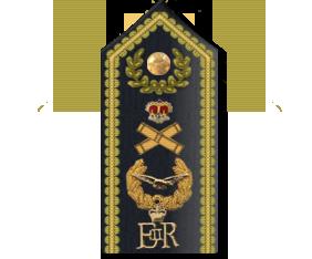 Marshal of the RAF shoulder Board