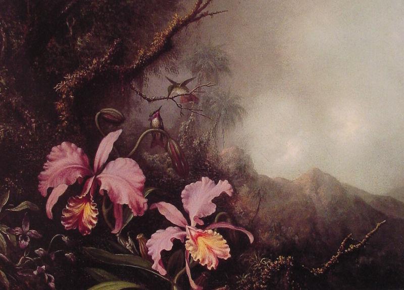 File:Martin Johnson Heade - Two Orchids in a mountain Landscape.jpg