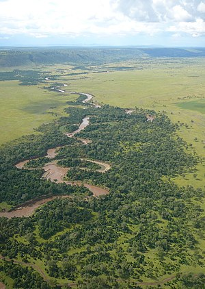 Mara River - Mara river in Narok County