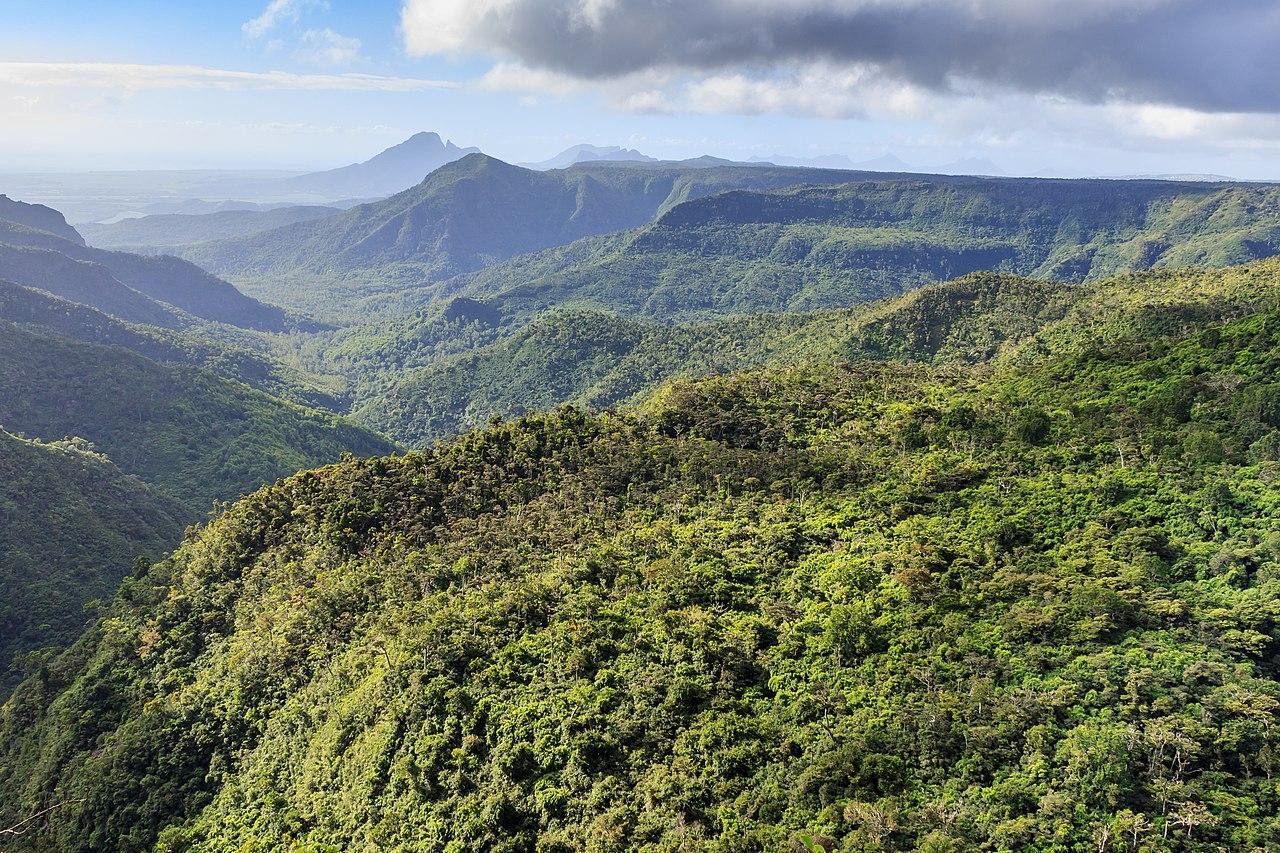 Mauritius Black River Gorge park
