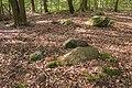 Megalithgrab Everstorfer Forst Nord 4.jpg