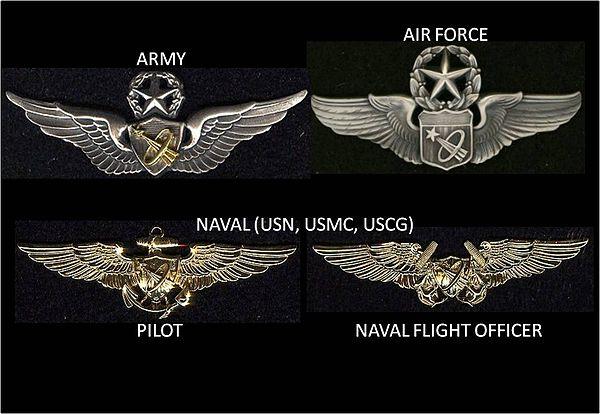 army astronaut badge - HD1131×781