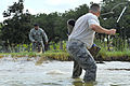 Military Working Dog Trains in Water DVIDS299397.jpg