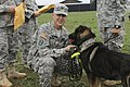 Military working dog team recognized for service by U.S. leaders of Kosovo mission 151013-A-RN359-652.jpg