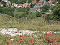 Millington from poppy-lined Wolds Way - geograph.org.uk - 354497.jpg