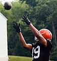 Mles Austin 2014 Browns training camp.jpg