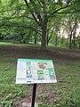 Morgan Arboretum 06.jpg