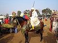 Morocco CMS CC-BY (15126555414).jpg