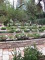 Mount Herzl Military Cemetery IMG 1355.JPG