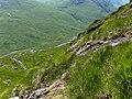 Mountainside above Glen Kinglass - geograph.org.uk - 204665.jpg