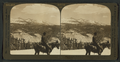 Mt. Clark (11250 ft.) S.E. from the slopes of Cloud's Rest, Yosemite, Cal., U.S.A, by H.C. White Co..png