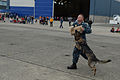 NAS Whidbey Island hosts open house 140719-N-DC740-060.jpg
