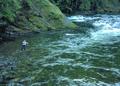 NRCSOR00006 - Oregon (5711)(NRCS Photo Gallery).tif