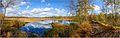 NSG-Wittmoor, der See mit Damm.jpg
