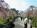 Nagoyashinougyoucenter.JPG