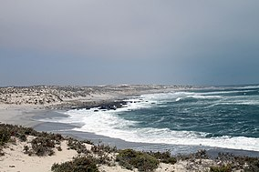 Namaqua National Park, Northern Cape, South Africa (10993751525).jpg