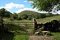 Narrowdale Hill - geograph.org.uk - 307233.jpg