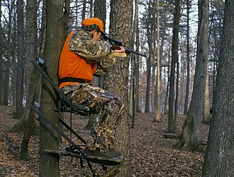 Hunting - Deer hunter on a tree stand